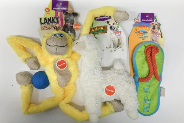 Puppy Fun Pack